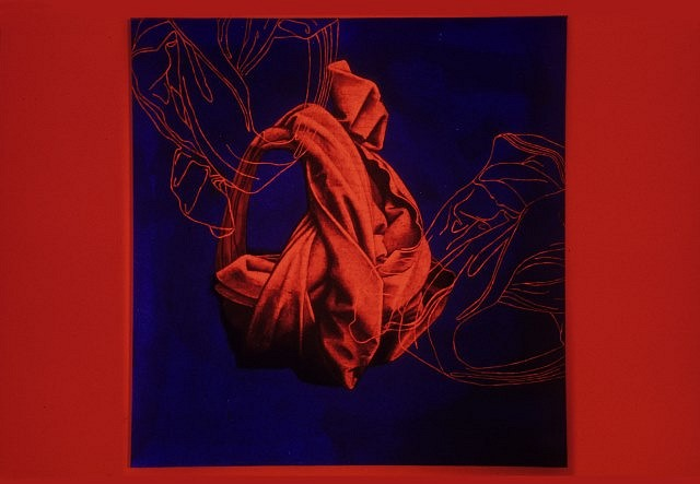 Sam Ainsley   Red Cocoon , 2006   acrylic on canvas, 48 x 48 in.